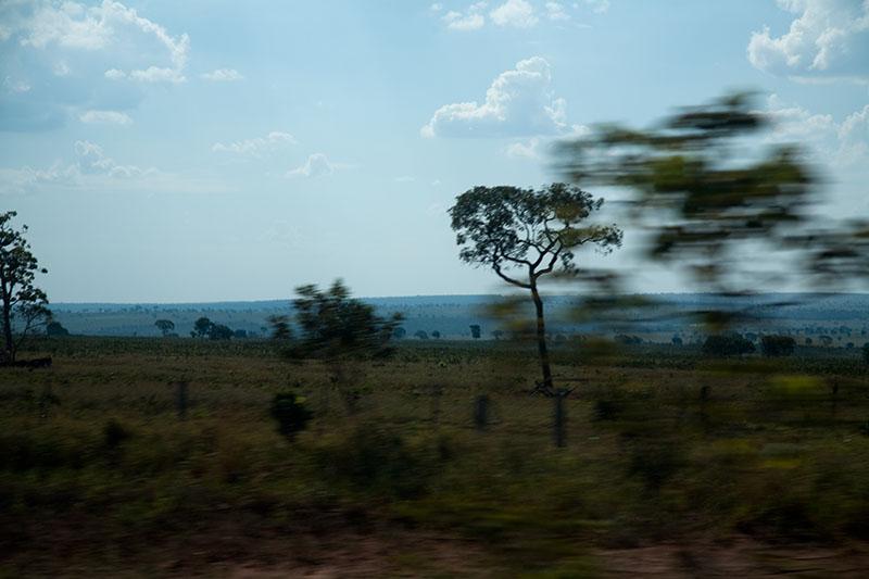 from Sorocaba to Rodonópolis