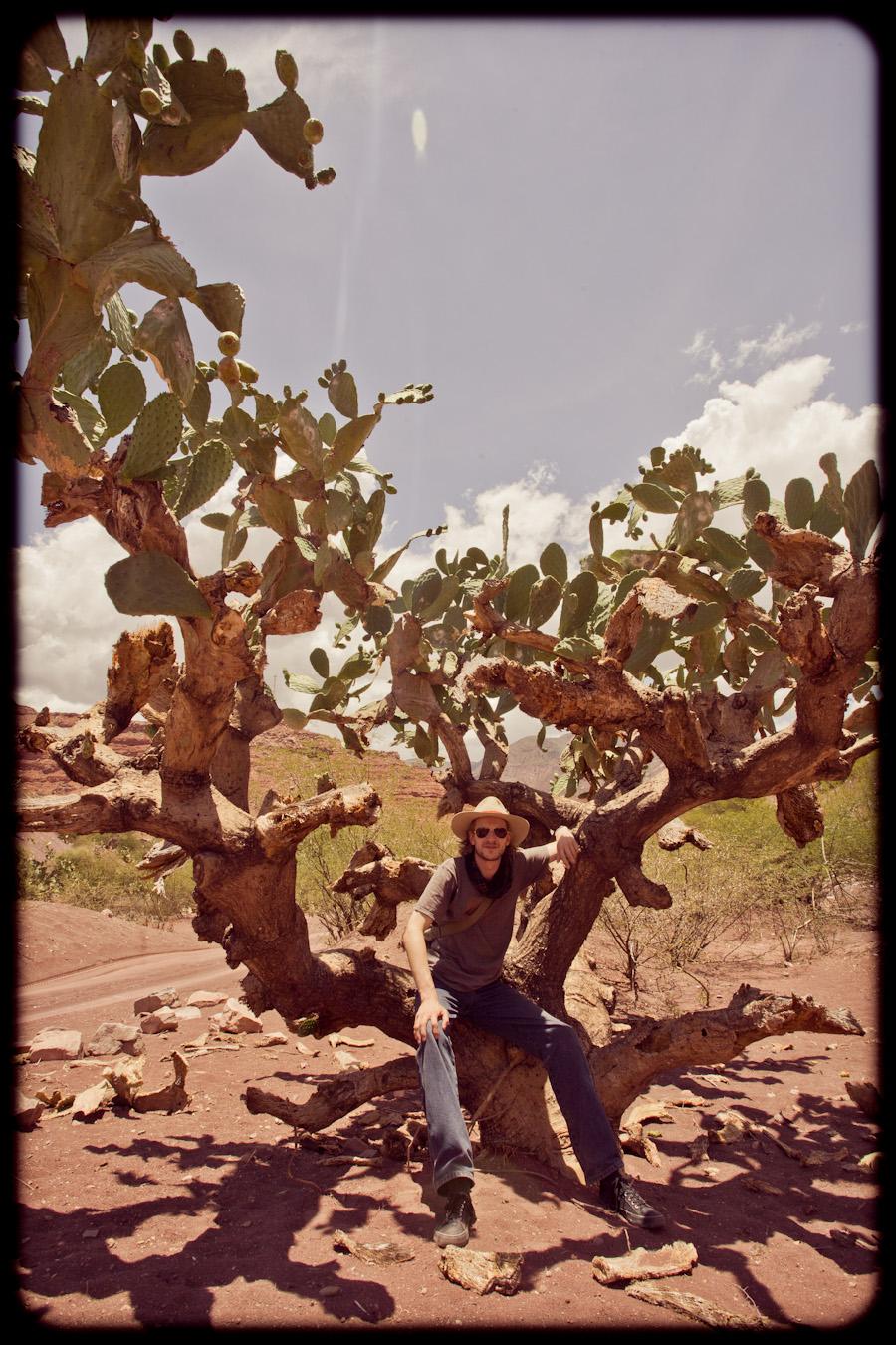 w trampkach przez pustynię